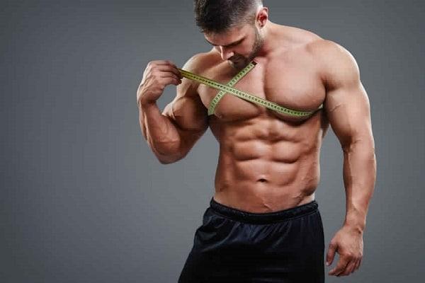 prise de masse steroide