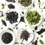 Micro-algues alliées étonnantes
